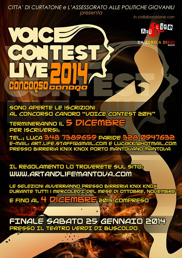 voice-contest-2014_bassaris.jpg